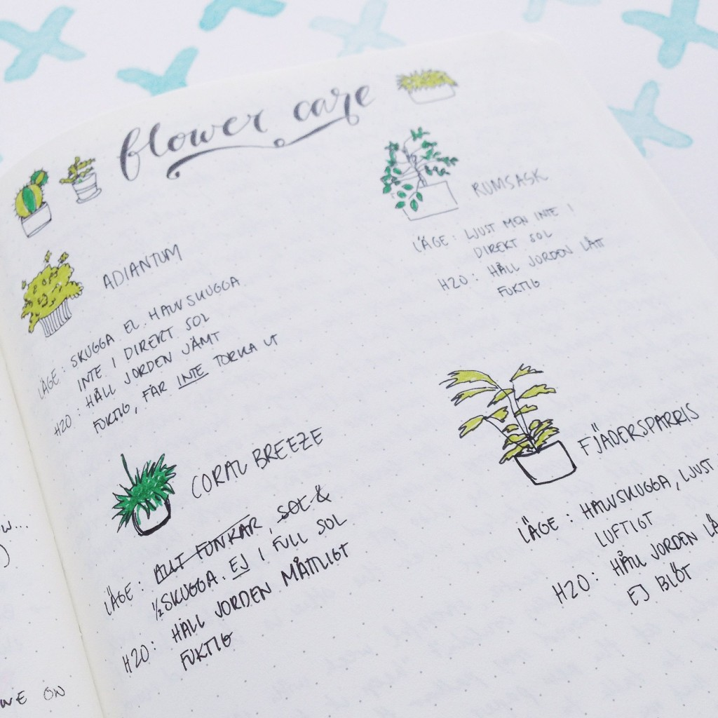 Bullet Journal Mistakes - wrote wrong information
