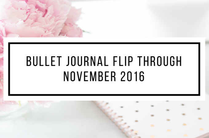 Bullet Journal Flip Through November (VIDEO)