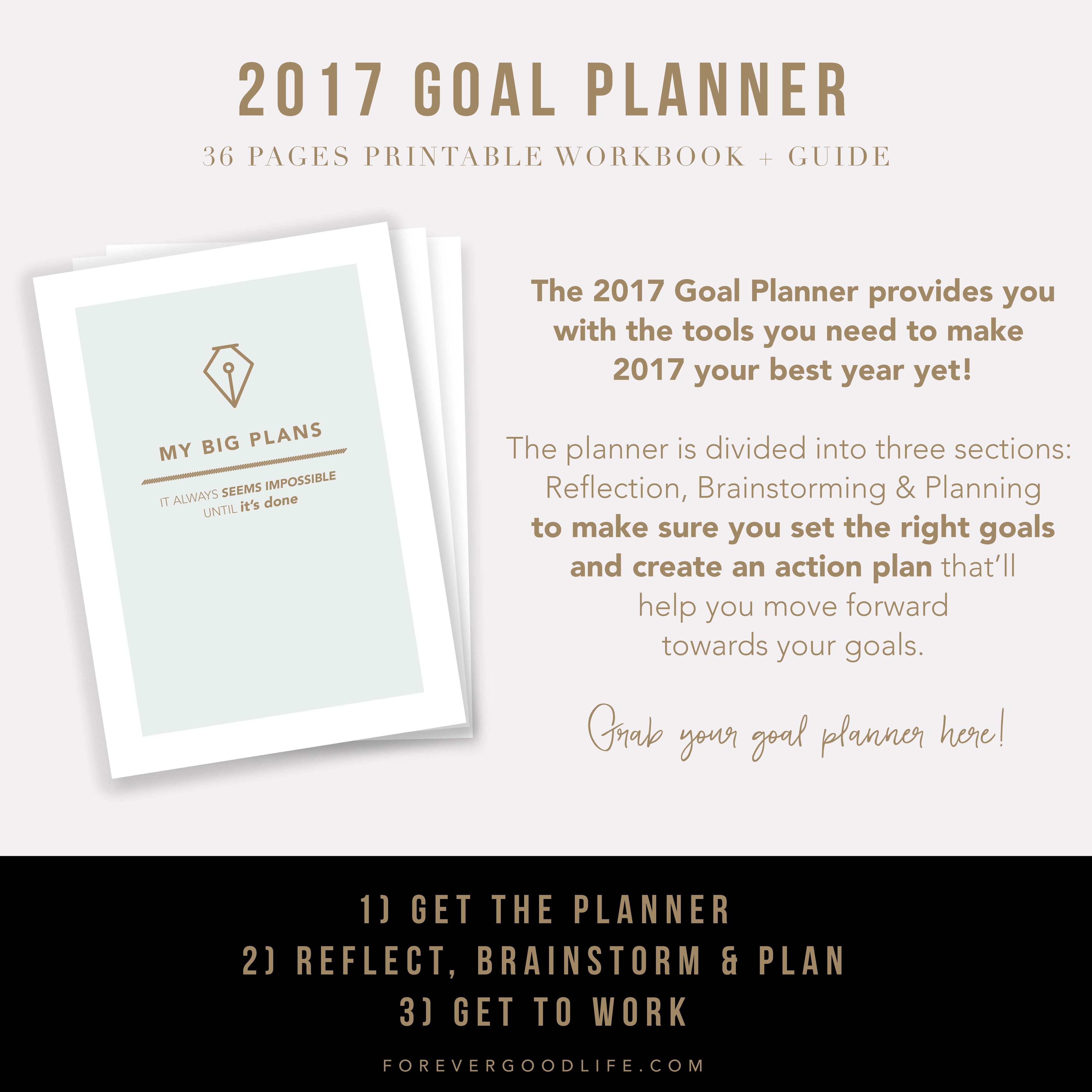 2017 Goal Planner - ForeverGoodLife