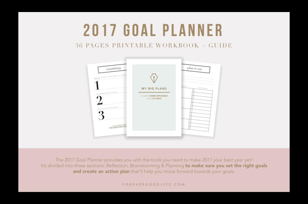 2017 Goal Planner Workbook - ForeverGoodLife