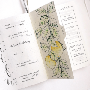 18 dutch door ideas for your Bullet Journal - to see all go to ForeverGoodLife.com - this one is by ajournalbyannie